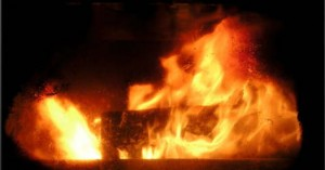 Buy Firewood Logs for Woodburners
